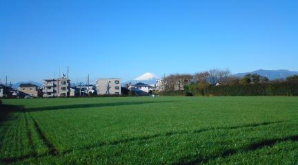 富士山081207朝.JPG